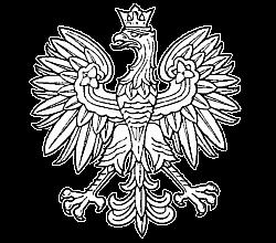 Komornik Sądowy przy Sądzie Rejonowym w Wejherowie Dominik Mrówczyński
